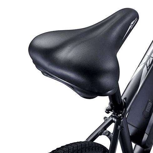 Schwinn Sycamore ergonomic seat